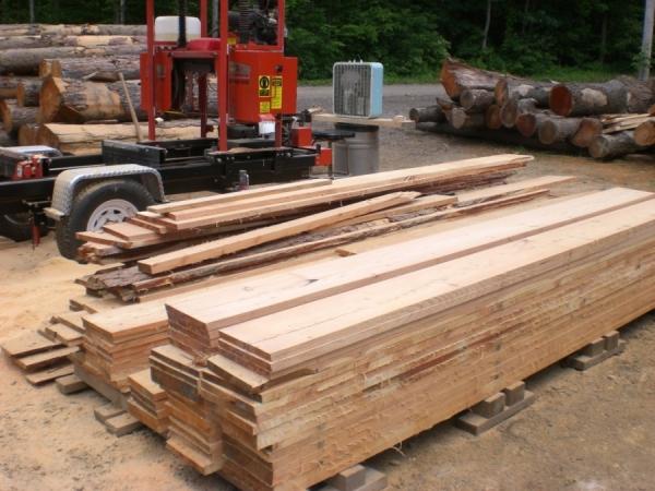 Лиственница: применение в качестве строительного материала и свойства древесины (85 фото)