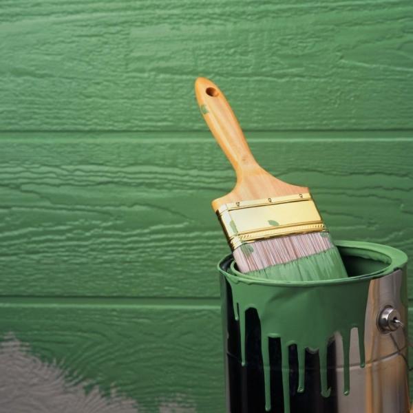Краска без запаха – быстросохнущие варианты для внутренних отделочных работ (80 фото)