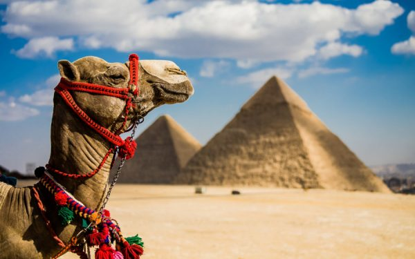 Кому в Египте отдыхать хорошо?
